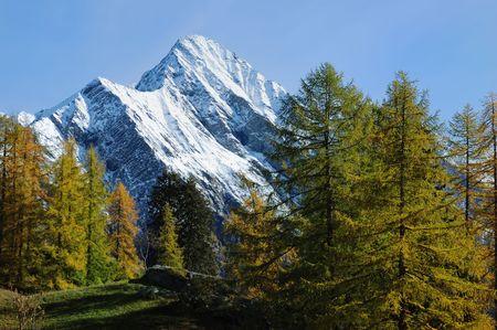 vibrant colours: Mountain landscape in fall season (vibrant colours version); west alps Italy