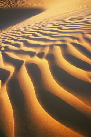 Ripples of desert dunes, sahara, Tunisia, Africa. photo