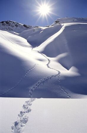 foot path: Single trail of footprints in deep snow, mountain area, backlite, vertical orientation