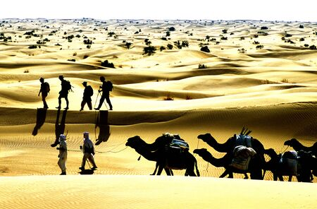 Group of trekers going through the sand dunes in the Sahara Desert, Algeria, Africa. Posterize effect photo