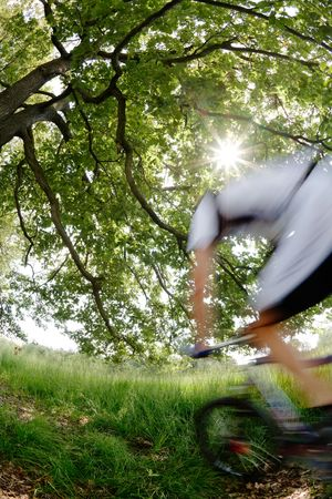 A mountain biker riding in a woods; blur effect, fish-eye lens photo