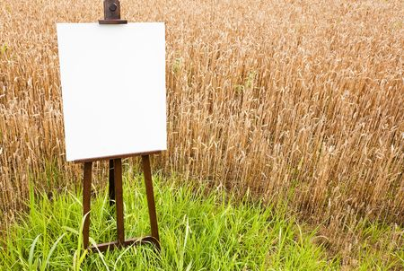 easel: Blank canvas on a wooden easel over a grain field. Large copy space on the white canvas. Horizontal orientation