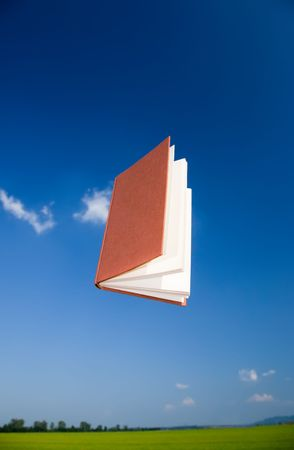 vertical orientation: Flying book over a clear blue sky, vertical orientation. The text of the book is been blurred to avoid copyright issues.