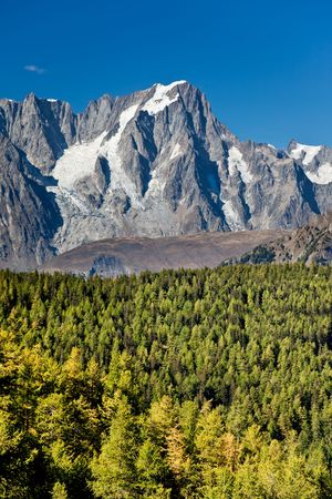 Mountain landscape: larch woods over high mountain peak (Grand Jourasses, Mont Blanc, italian Alps), vertical frame, fall season. photo