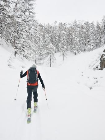 arri�re-pays: Skieur hors piste marche dans une montagne enneig�e de la vall�e de Gressoney, Val d'