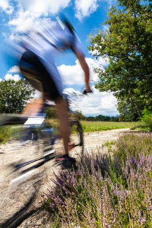 Cyclist in blurred motion riding on a rural road through green spring meadow