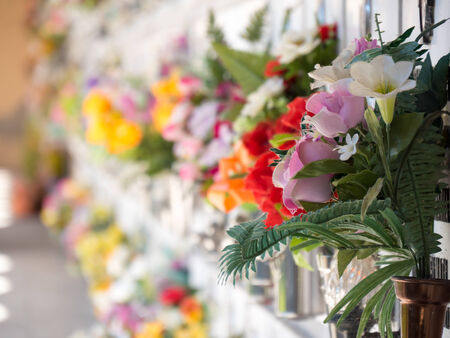 cemetery: Graves with flowers on a wall of a European cemetery  Vercelli, Italy, Europe