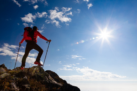 男性ハイカーが山の上に立っています。光沢のある太陽と夏の日。背面ビュー。