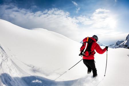 powder snow: Skiing: male skier in powder snow. Italian Alps, Europe.