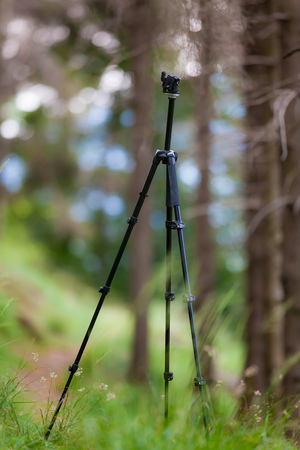 tripod mounted: An open tripod, without mounted camera, in a summer mountain forest.