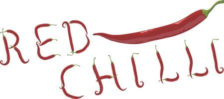 spicy chilli: Red Chilli Illustration