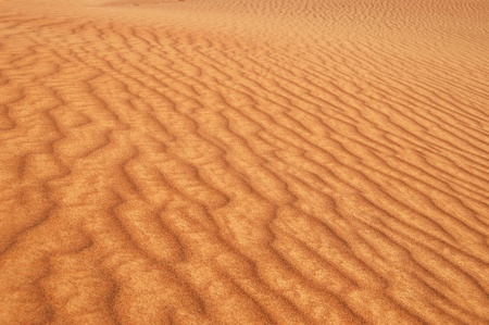 Golden desert sands photo