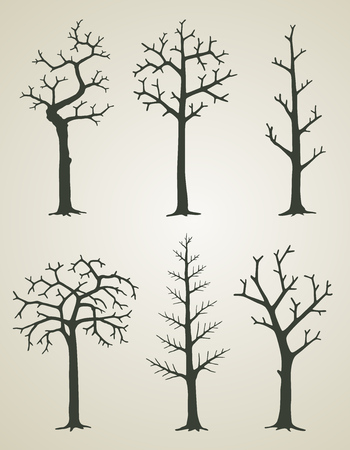 Vector illustration of trees without leaves 向量圖像