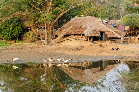 kolkata: Sundarbans Jungle National Park in India. The bigest delta river on the World where live Bengal Tiger. UNESCO. Ethnic village nearest the park where the people live as same as the 100 years ago Stock Photo