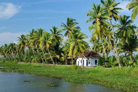 Coco Bäume Reflexion und Haus am Rücken Gewässer von Kerala, Indien Standard-Bild - 11808632