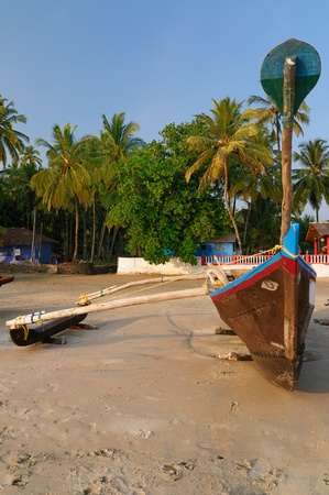 Sand tropical beach with coconut trees and traditional boat - Palolem beach, Goa, India photo