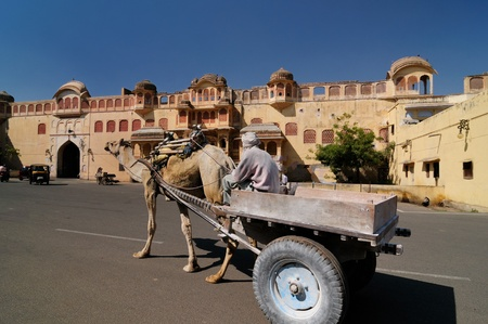 rajput: Camel carriage on the street in Jaipur, Rajasthan, India