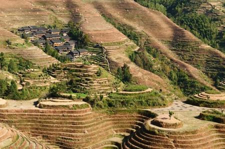 terracing: Dragons Backbone Rice Terraces - ancient beautiful rice terraces of Longsheng near Guilin, Guanxi province, China Stock Photo