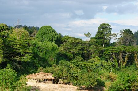 negara: Overview of the jungle and river in Taman Negara National Park, Malaysia Stock Photo