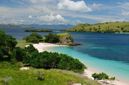 komodo: Spiaggia nel Parco Nazionale di Komodo - isole paradiso per le immersioni ed esplorare. La destinazione turistica pi� popolate in Indonesia, Nusa Tenggara. Archivio Fotografico