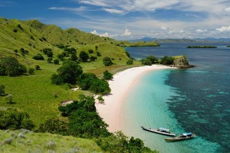 komodo: Parco Nazionale di Komodo - isladnds paradiso per le immersioni ed esplorare. La destinazione turistica pi� popolate in Indonesia, Nusa Tenggara.