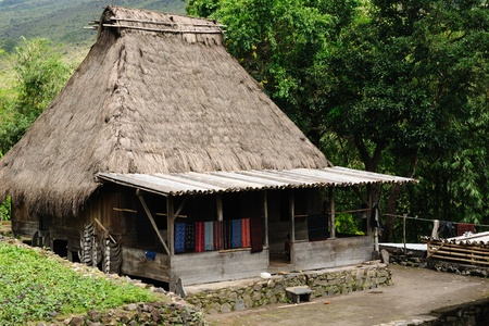 nusa: Indonesia the country side - Bena minority village on the Flores island near Bajawa. Traditional grass hut.  Nusa tenggara.