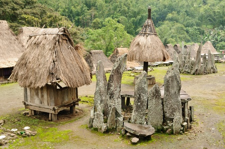 country side: Indonesia the country side - Bena minority village on the Flores island near Bajawa. Traditional grass hut.  Nusa tenggara.