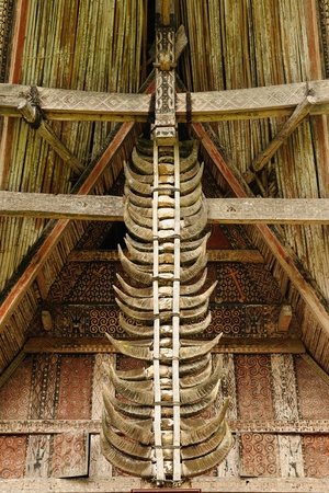 Traditional sweeping and elaborately painted houses with boat-shaped roofs in Tana Toraja. Tongkonan house. Buffalo horns stuck on the front of the house. South Sulawesi, Indonesia photo