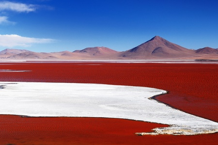 Bolivia - the most beautifull Andes in South America. The surreal landscape is nearly treeless, punctuated by gentle hills and volcanoes near Chilean border. The picture present lagoon Colorada