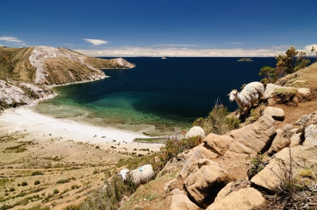 Bolivia - Isla del Sol on the Titicaca lake, the largest highaltitude lake in the world (3808m). This islands legendary Inca creation site and the birthplace of the sun. Landscape of the Titicaca lake photo