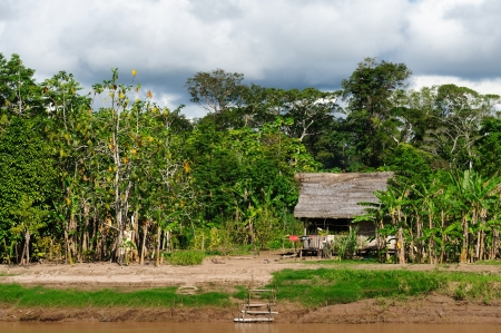 Peru, Peruvian Amazonas landscape  The photo present typical indian tribes house in the Amazon