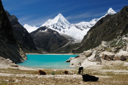 Peru, Beautiful Cordillera Blanca mountain  The picture presents lagoon Paron Banco de Imagens
