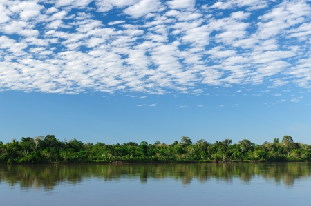 amazon river: Peru, Peruvian Amazonas landscape  The photo present reflections of Amazon river