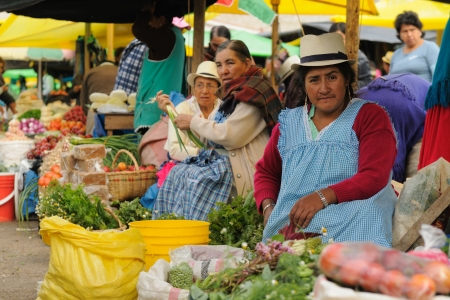 Ecuador, Gualaceo - August 22  Ecuadorian ethnic women in national clothes selling agricultural products and other food items on a market in the Gualaceo village on August 22, 2012 in Gualaceo Stock Photo - 15203708
