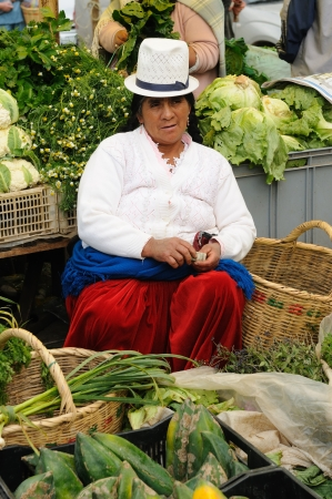 indian artifacts: Ecuador, Gualaceo - August 22: Ecuadorian ethnic women in national clothes selling agricultural products and other food items on a market in the Gualaceo village on August 22, 2012 in Gualaceo Editorial
