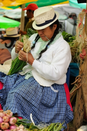 Ecuador, Gualaceo - August 22  Ecuadorian ethnic women in national clothes selling agricultural products and other food items on a market in the Gualaceo village on August 22, 2012 in Gualaceo Stock Photo - 15792308