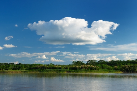 Peru, Peruvian Amazonas landscape. The photo present reflections of Amazon river photo