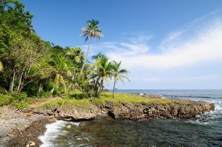 Colombia, wild coast of the Caribbean sea near Capurgana resort where the Darien jungle is encountering the beach Stock Photo - 17008644