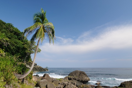 Colombia, wild coast of the Caribbean sea near Capurgana resort where the Darien jungle is encountering the beach Stock Photo - 17201125