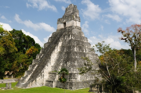mayan: Guatemala, Mayan ruins in the jungle in Tikal. The picture presents Temple I on the Plaza Grande