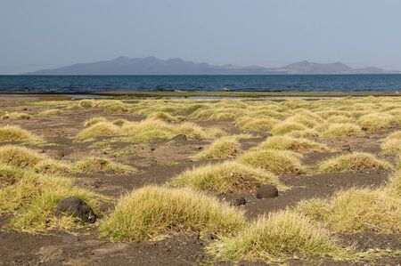 Typical african landscape - Lake Turkana, Kenya photo