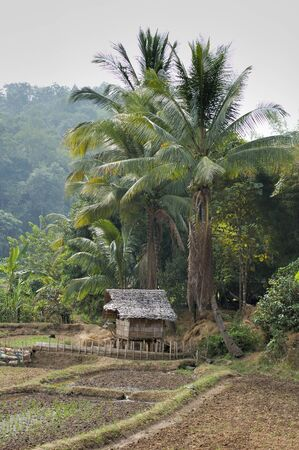 Thailand country side photo