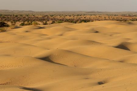 Sand dunes on the Thar desert in India, Rajasthan