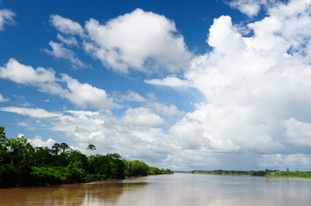 Amazonas landscape. The photo present  Amazon river, Brazil photo