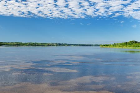 amazonas: Amazonas landscape. The photo present  Amazon river, Brazil
