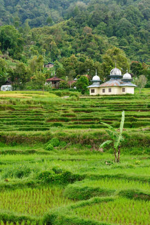 印度尼西亚乡村在西苏门答腊岛附近的苏克吉特市度假村