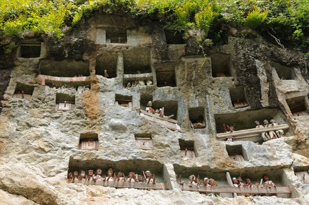 coffins: Londa, is a burial cave at the base of a massive cliff face.The entrance to the cave is guarded by a balcony of tau tau. Inside the cave is a colection of coffins with the bones either scattered or heaped in piles. Tana Toraja, Indonesia.