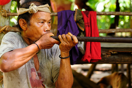 poisoned: LONG COP BORNEO INDONESIA JUNE 06: Native American hunting in the jungle on an island of Borneo with blowgun with poisoned arrows Long Poso on June 06 2011 Editorial