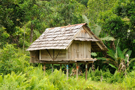Traditional Dayak tribal culture. Modern Dayak house in the jungle. East Kalimantan Indonesia Borneo.