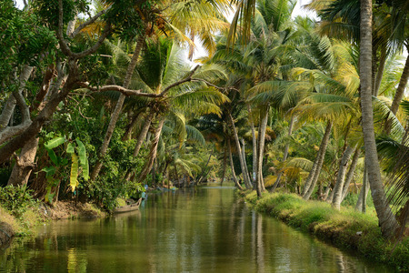 India, Coco trees reflection and beautifoull house boat at back waters of Kerala
